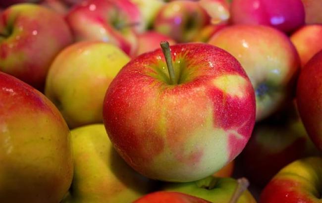 Диетолог назвала топ-3 малоизвестных фактов о яблоках