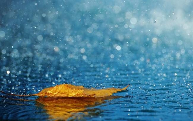 Погода на сегодня: в Украине местами ожидаются дожди, температура до +26
