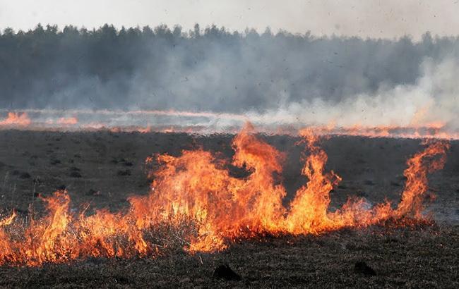 В Черниговской обл. вблизи арсенала Минобороны произошло 2 лесных пожара