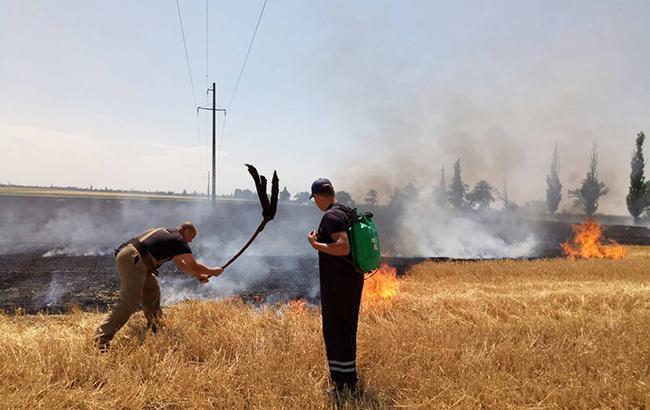 Во Львовской области сгорело 20 000 кв. м поля