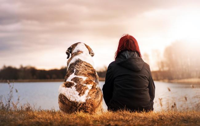 Заведите собаку: эксперты дали неожиданный совет о том, как стать здоровыми и счастливыми